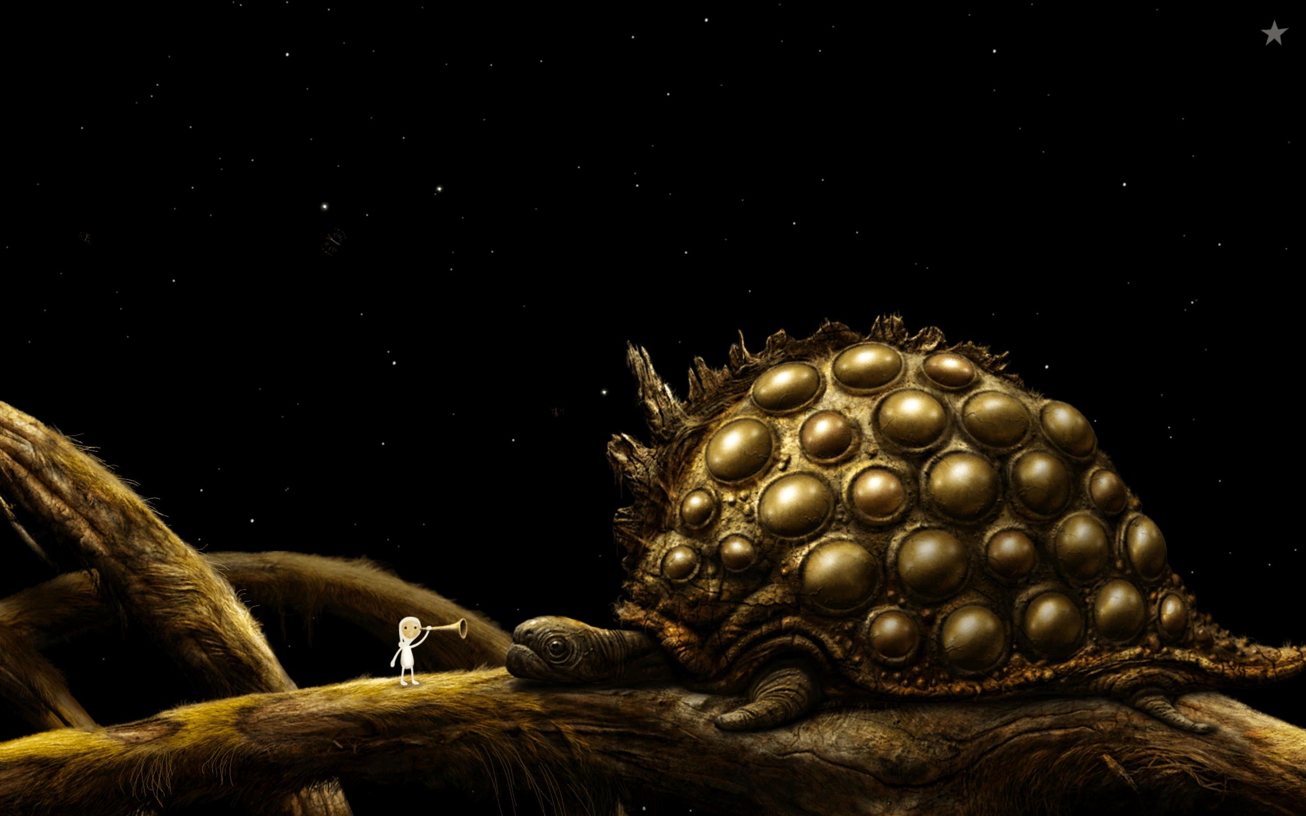 Tortoise thing