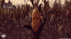 REVIEW / Maize (PC)